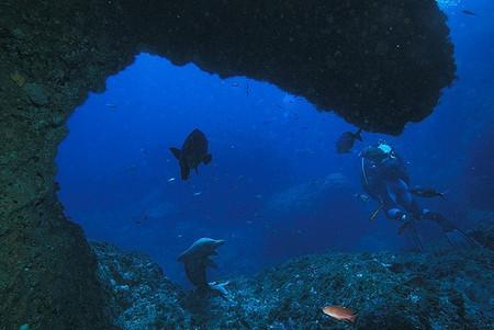 Дайвинг на островах Медес.jpg