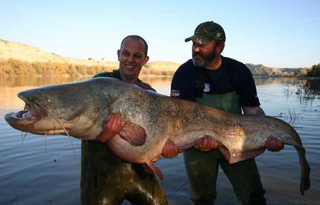 рыбалка в испании ....jpg