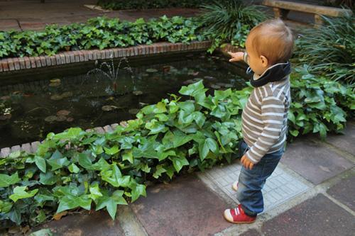сады барселоны..jpg