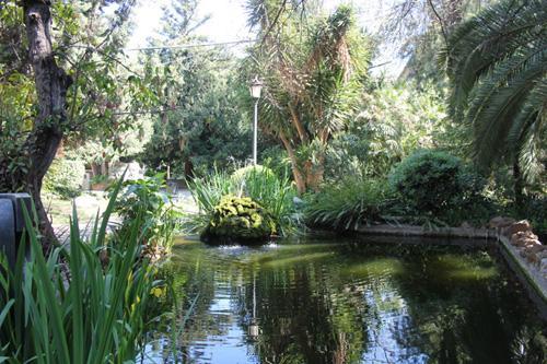 сады барселоны....jpg