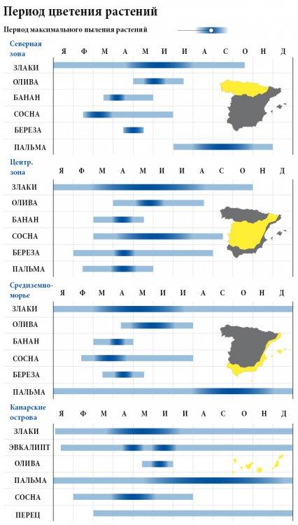 медицина испании 2.jpg