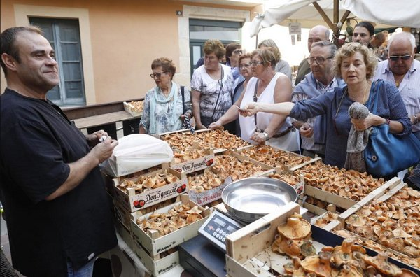 ярмарка в испании, Fira del Bolet Llagostera.jpg