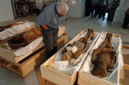 музей египта .......