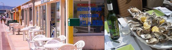 достопримечательности франции, каркассон экскурсия, устричная ферма.jpg