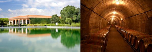 достопримечательности испании, экскурсии в испании, винодельня торрес.jpg