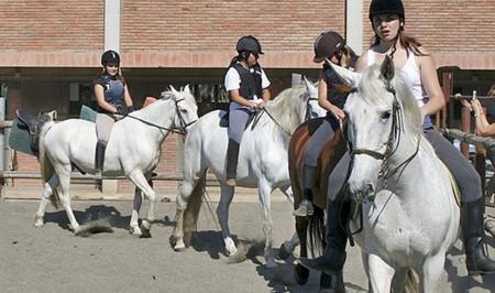 конная школа, отдых в испании ..jpg