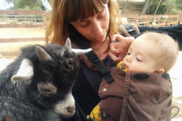 каталония отдых с детьми