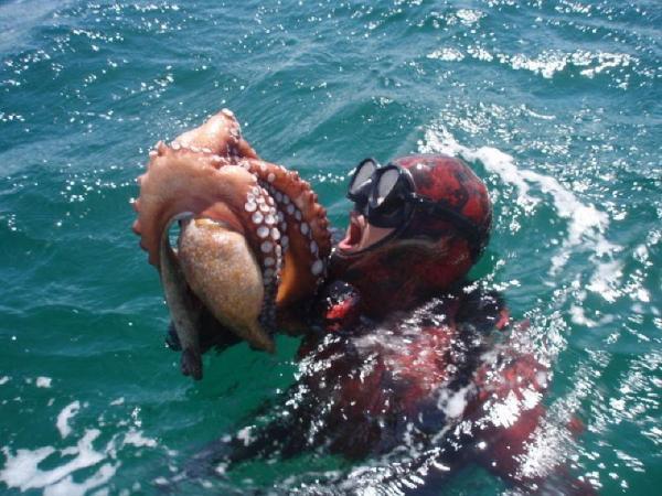 рыбалка на каракатицу.jpg
