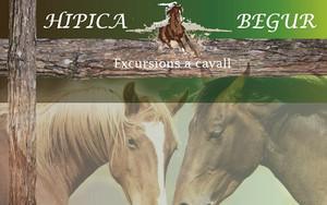 конные экскурсии, бегур.jpg