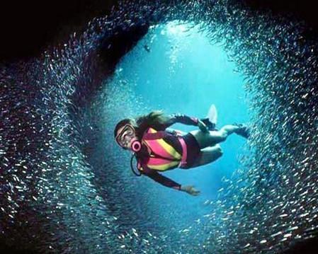 Курс дайвинга в бассейне в Ллеиде на Коста Дораде.jpg