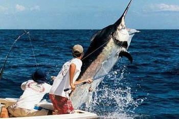 рыбалка в испании.jpg
