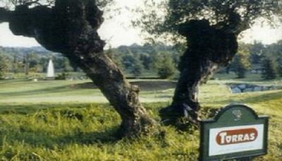 Escuela de Golf HCP 1.jpg