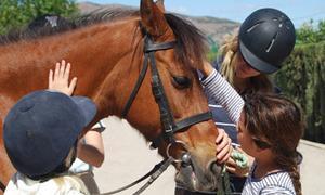 детский лагерь испания, с пони..jpg
