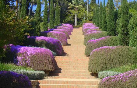 сады маримутра1.jpg