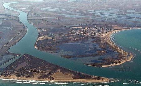 дельта реки эбро.jpg