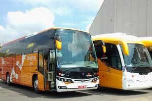 ребенок автобус аэропорт жирона платья де аро термобелье никаких