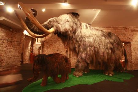 музей мамонта.jpg
