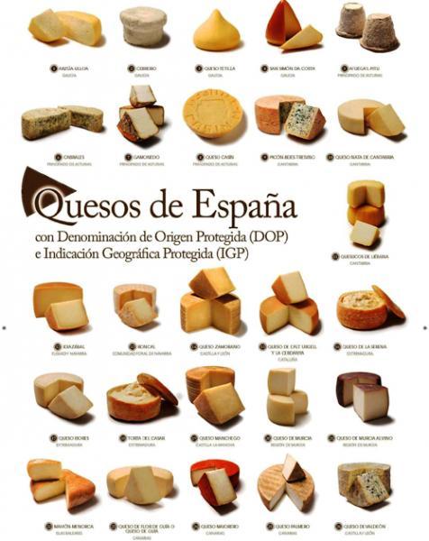 сырный каталог.jpg