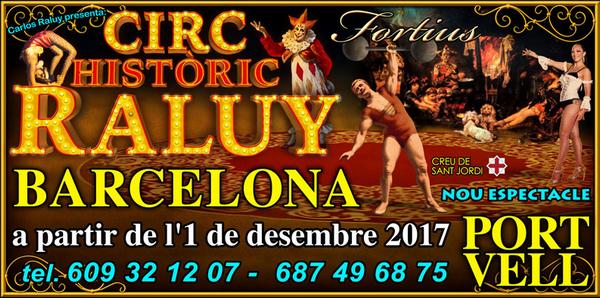 шоу в испании, цирк в барселоне.jpg